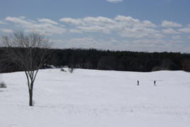 X-country skiing at Wagon Hill Farm