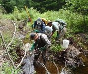 Stream monitoring for the Tim Mountain Conservation Center