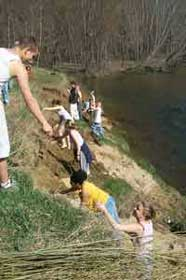 Students planting a buffer