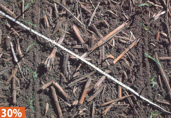 30 percent ground cover - This level of residue might be expected from one fall chisel with straight shanks, a shallow disking in the spring, a field cultivation, and planting