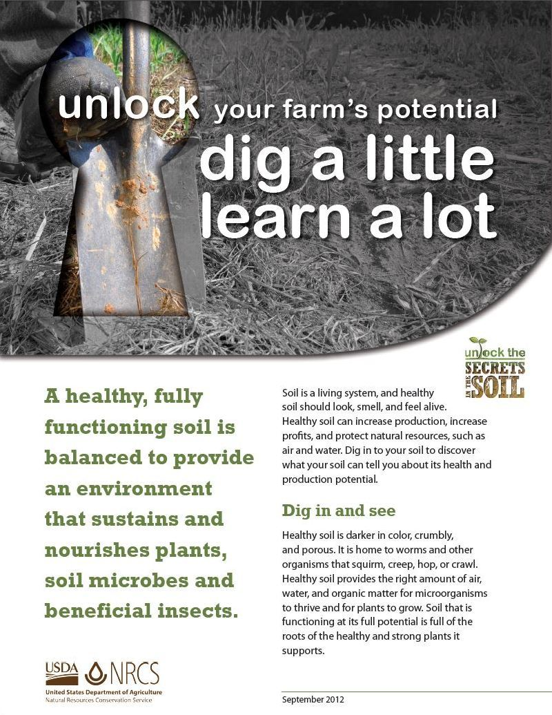Web link image: Unlock Your Farm's Potential - Dig a Little Learn a Lot