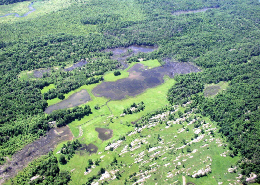 Web image: An aerial view of wetlands in St. Lawrence County, New York. Practices funded through the Wetlands Reserve Program (WRP). Click photo for full page view