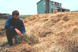 Straw mulch applied to disturbed soil on the site of a new house