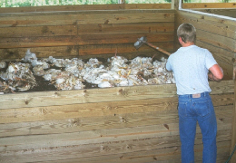 A farmer managing animal carcasses in an animal mortality facility