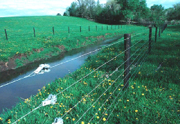 A fence installed to prevent access to a stream by livestock and equipment.