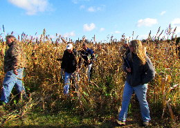 Wewb image: Cover crop tour attendees inspecting a field planted to a cover crop. Click image for full screen view