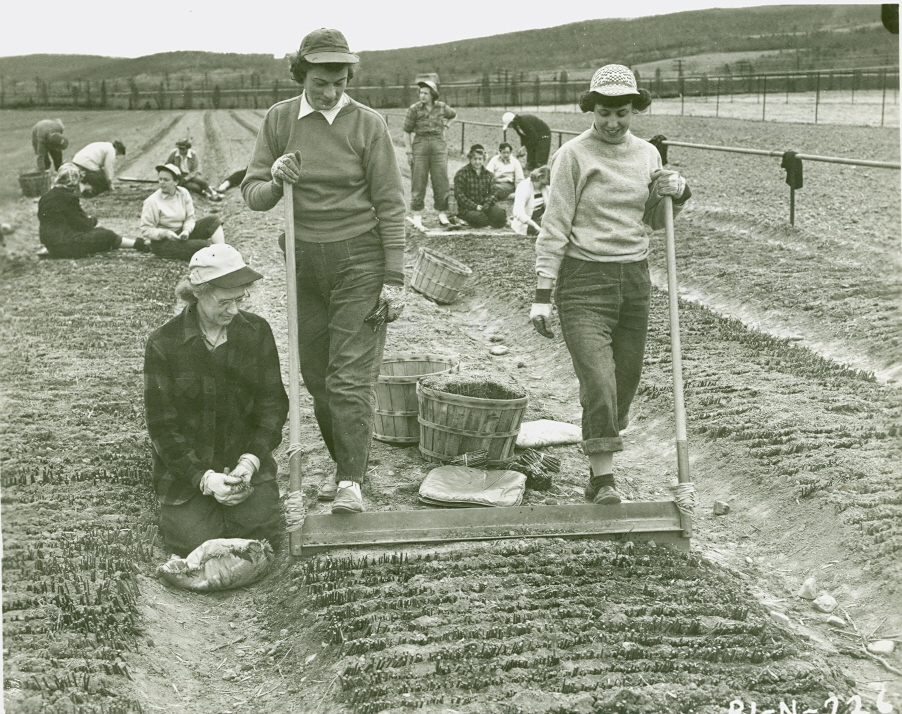 My grandmother mary tyler first female soil scientist for Soil scientist