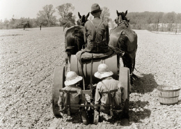 Web image: Photo from the 1940s showing a farmer pulling a tomato planter. His two little girls sit on the back, drop the plants into the ground, and cover them. Click photo for full page view