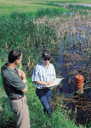 Web image: Photo of a two men standing at the edge of a wetland. Click photo for full page view