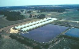 A waste treatment lagoon