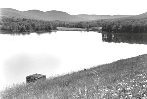 Web image: Photo of a dam site in the Batavia Kill Watershed. Click photo for full page view