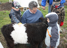 Web image: Jennifer Huntington and Bugbee Children's Center students with Belted with Buffy the Belted Galloway calf