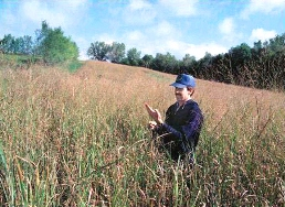 Conservation cover established on retired agricultural land