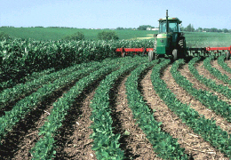Photo of a farm tractor pulling equipment in a crop field along the contour of the land. Click photo for full page view