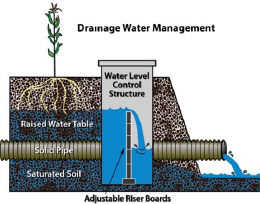 A water level control structure, part of a drainage water management system