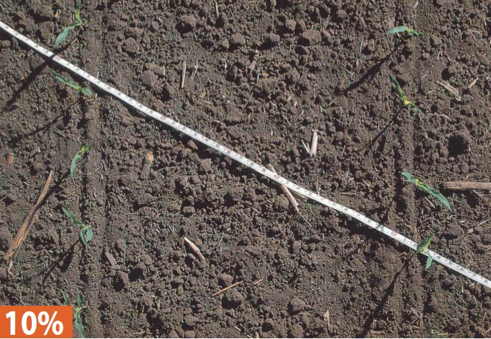 10 percent ground cover - This level of residue might be expected from a fall chisel with twisted shanks, a deep spring disking, a field cultivation, and planting