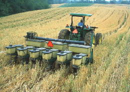 Web image: Photo of no-till planting of corn into a cover crop of barley. Click photo for full screen view