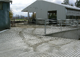 Web image: This is a different view of Terry's barnyard after receiving technical and financial assistance from NRCS
