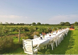 Web imahe: An outside dining table set up near the Food Panty Farm gardens