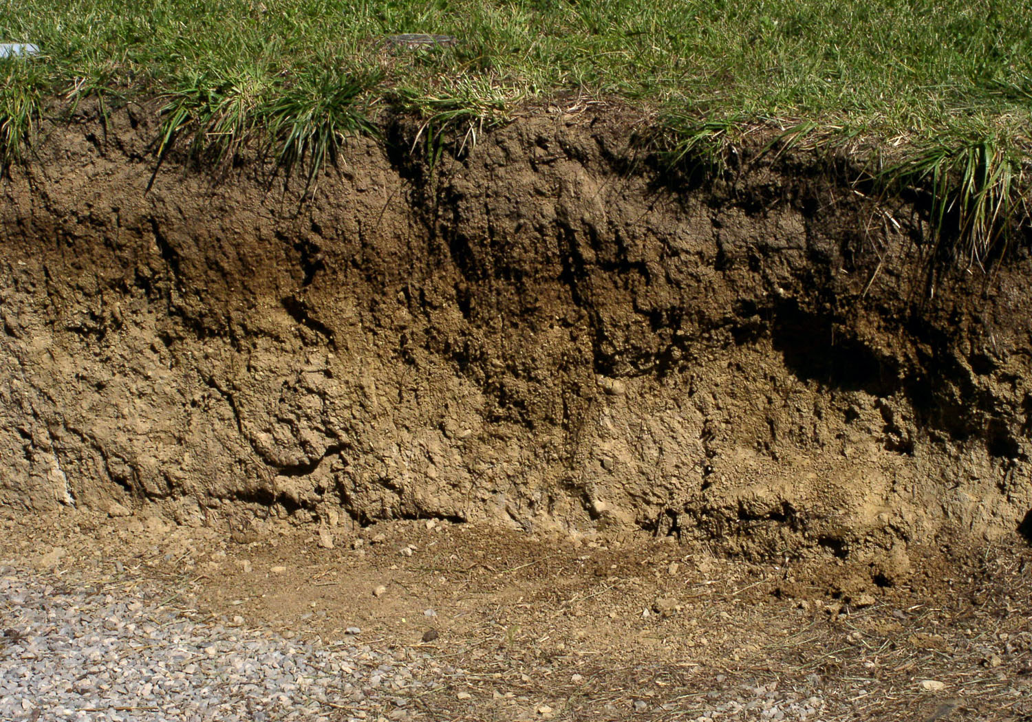 Photo category soils nrcs ohio for What are soil minerals