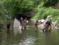 students monitor the biology in Middle Eel watershed