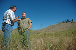 Spokane Tribe Biologist David Wood and NRCS District Conservationist Dave Kreft examine a recent planting of native grasses. These plantings will help fend off invasive species and establish sharp-tail grouse habitat.