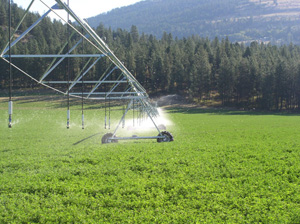 Pictured: Environmental Quality Incentives Program helps producers upgrade to a more efficient center pivot irrigation system saving needed water.