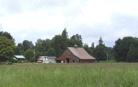 This barn is an example of a Shed Barn style with large center doors for wagons and stock doors on either side.