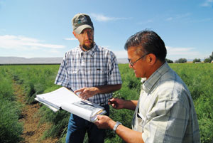 In a field of asparagus at Inaba Produce Farms, NRCS Tribal Liaison John George and Operations Manager Lon Inaba review the farm's conservation plan.