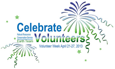 Celebrate Volunteers Graphic