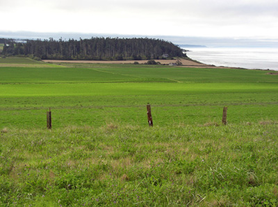 A picture of the prime farmland at Ebey's Landing National Historic Reserve.