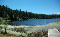 McCoy Lake, another restoration project of the Spokane Tribe, has risen seven feet since 2005.