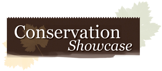 Graphic - Conservation Showcase Header
