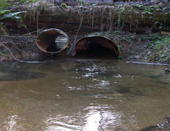 Image: Inlet of exisiting culverts.