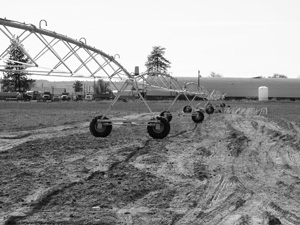 Installing the center pivot irrigation system will help Janet Pakootas save valuable water resources in an area with limited availability.