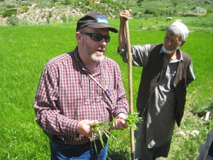 Greg Schlenz looking at Spring Wheat with local Afghan Farmer, Obdara Village, Panjshir Province, Afghanistan