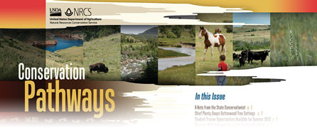 Conservation pathways newsletter banner