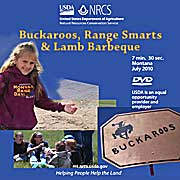 Picture of Buckaroos, Range Smarts, and Lamb Barbeque DVD label