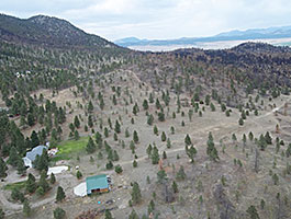 In this aerial photo it can be seen that trees near the house are widely spaced.