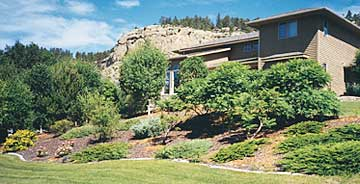 Summer photo of urban home with native landscaping.