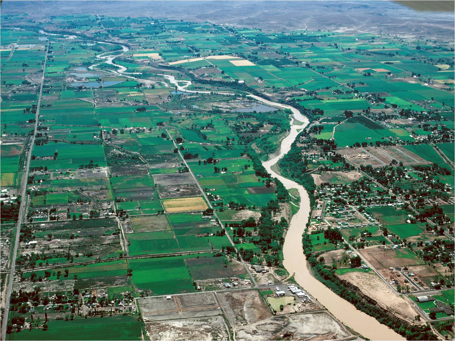 Colorado River passing through Grand Valley agricultural land.