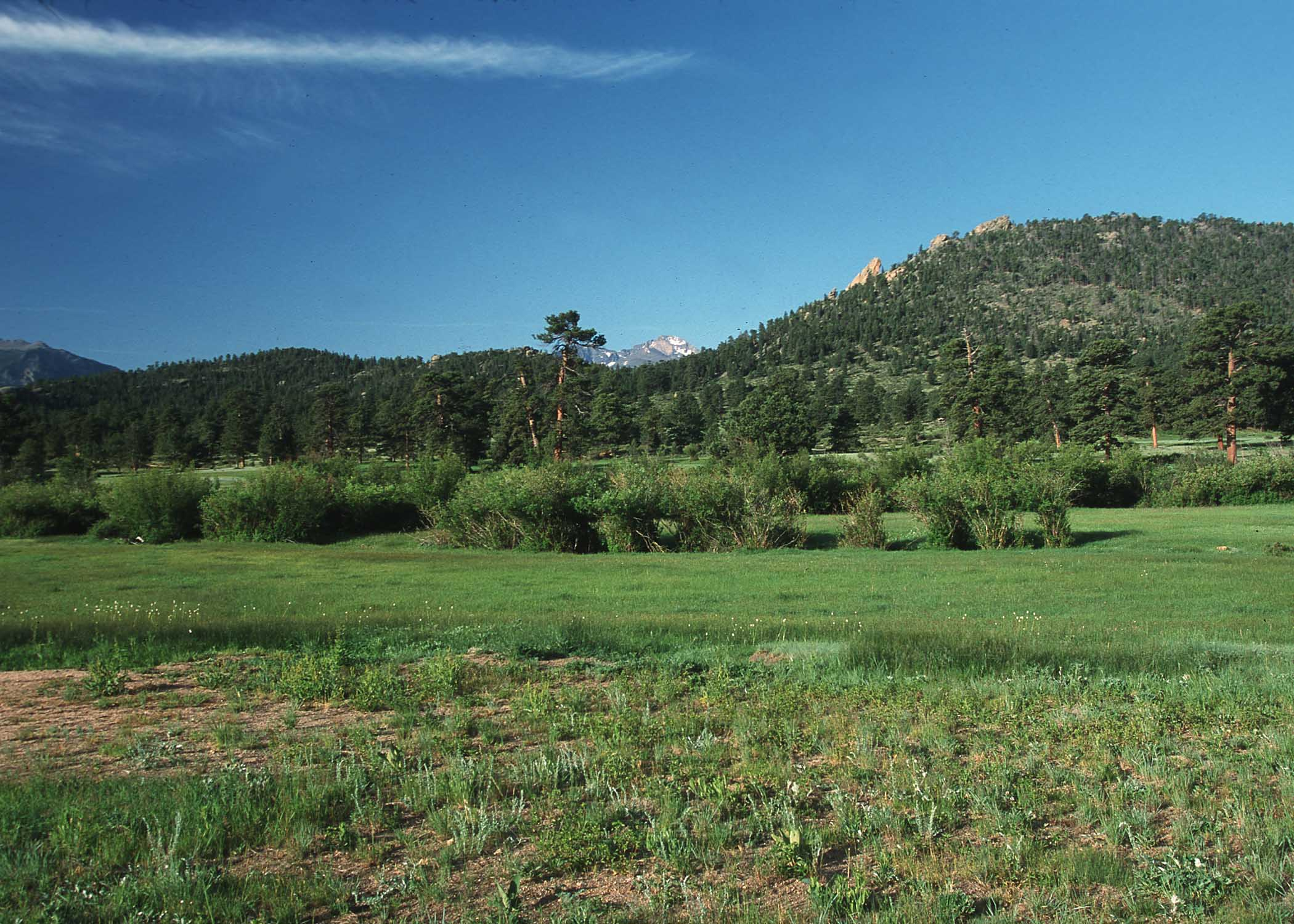 Picture of Rangeland