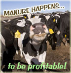 Photo of cows. Caption: Manure Happens...to be profitable!