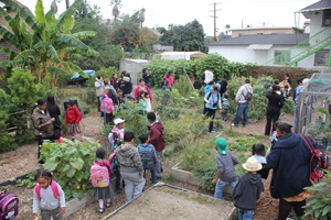 Local residents and students gathered at the Franklin Ave. People's Garden in downtown Los Angeles.