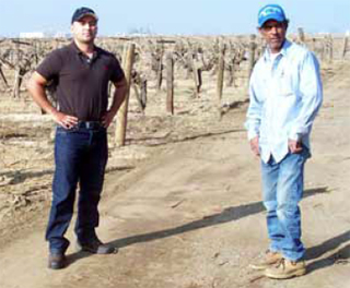 Rodolfo Alaniz (right) and his son Rudy applied oil to their unpaved farm roads to reduce dust problems in their vineyard.