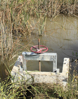 Lester entered into an EQIP contract with NRCS to convert flood irrigation systems to his new elevated sprinkler system.
