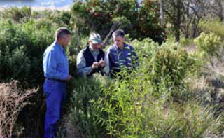 Pictured, left to right: Dan Efseaff, John Anderson and Phil Hogan check the habitat in one of Anderson's hedgerows along a canal.