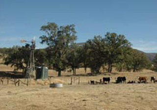 Dispersed watering facilities help distribute livestock across the ranch.