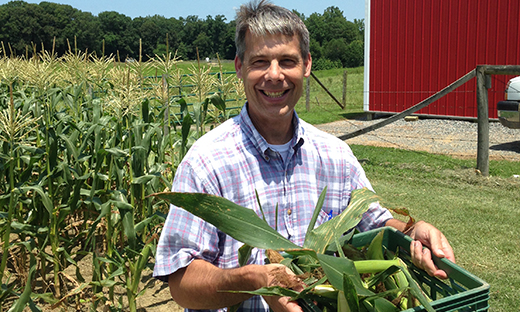 State Conservationist Jack Bricker helps glean corn for donation to a Virginia food bank.