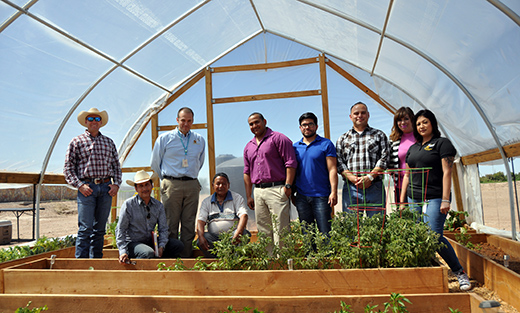 - High tunnels are a great resource for community gardens such as this one at the Ysletta del Sur Pueblo in El Paso, Texas.